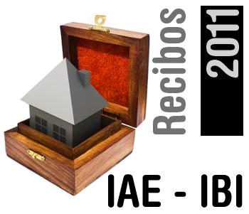 Recibos 2011, IAE-IBI