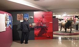 View 1 of the Museo Taurino de Bilbao