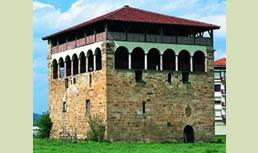 Vista 2 de Torre-Palacio de Muntzaraz