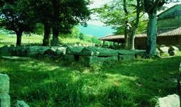Argiñeta nekropoliaren 1. ikuspegia