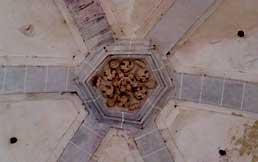 Vista 4 de Ermita de San Miguel de Arretxinaga