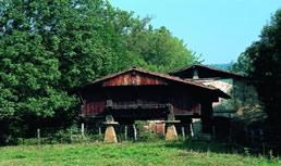 Ertzilla garaiaren 1. ikuspegia