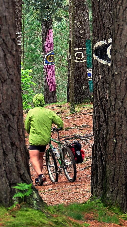 No hay rincon oculto donde no pueda llegar en bici
