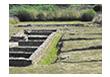 Yacimiento romano de Forua.