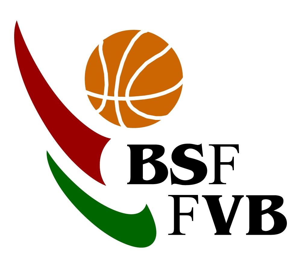 Bizkaiko Saskibaloi Federazioaren logotipoa